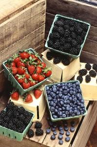 cholesterol pleasing berries