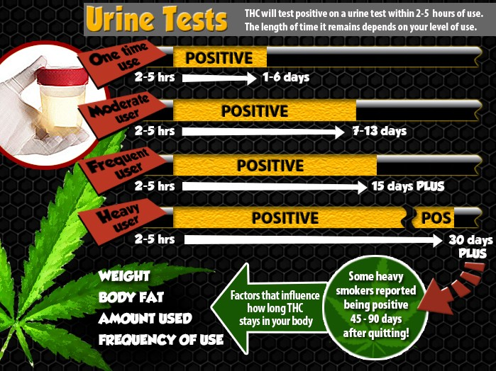 how long does marijuana stay in your urine