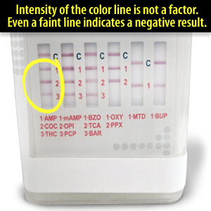 How To Read Urine Drug Test Strip Faint Line On Drug Test