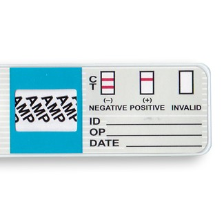 amp-drug-test-results.jpg