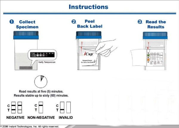 10 panel icup instructions