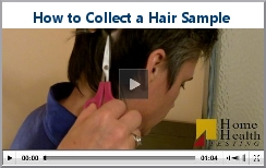 How to Collect a Hair Sample | Home Health Testing